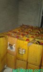 high quality of palm oil products