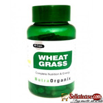 Buy Best Natural Wheat Grass Juice Powder Capsules In Bulk