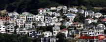 Best Property Lawyer in Wellington