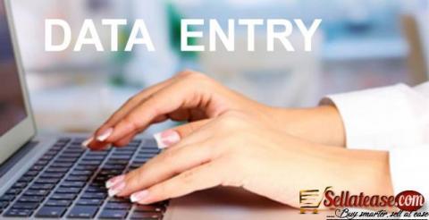 We Will Do Data Entry Jobs