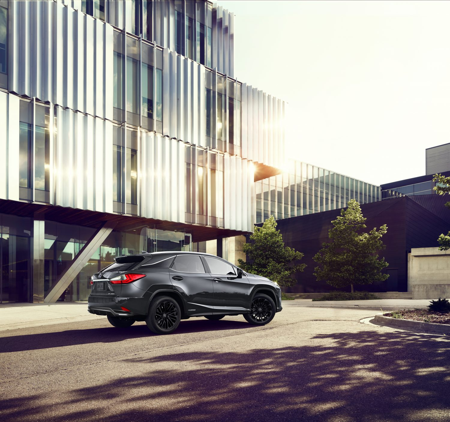 specifications and Price of 2022 Lexus RX Black Line in Nigeria